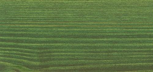 9242 Зеленая ель